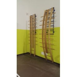 Orthopaedic straight ladder