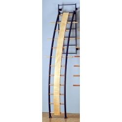 Tilting orthopaedic curved ladder