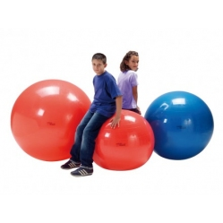 Psychomotor ball diam. 120 cm