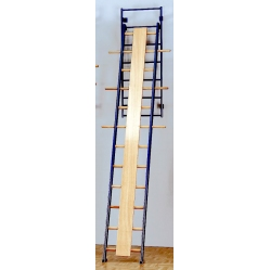 Tilting orthopedic straight ladder