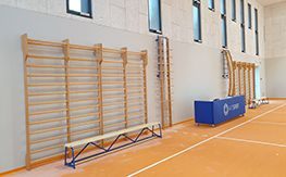 Wall bars for the gym