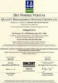 FIBA Certification