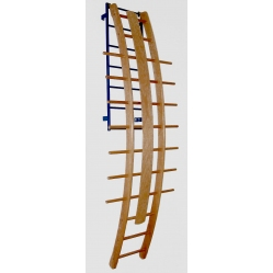 Orthopaedic curved ladder